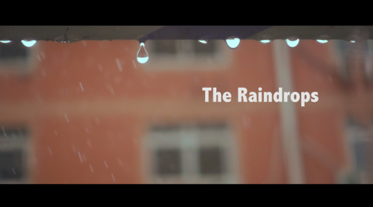 The Raindrops  500fps下的雨落世界