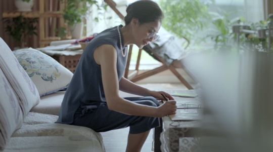 baidu mobile assistant 母亲节导剪版
