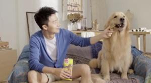 宝路狗粮品牌广告 黄轩萌狗篇