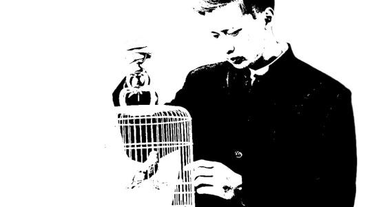 世界上唯一懂鸟语的人死了
