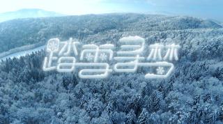 北京2022年冬奥会申办歌曲《踏雪寻梦》MV