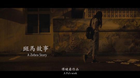 14浙传大叔《斑马故事》