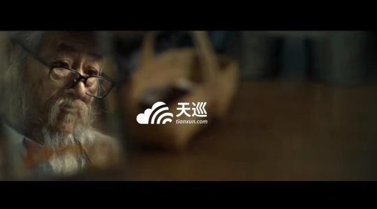 天巡过年三章之 让春节成结(导演版)