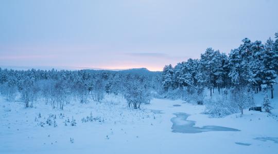 可能是最接近梦的地方-芬兰拉普兰之旅