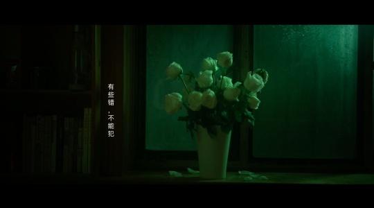 《白玫瑰》