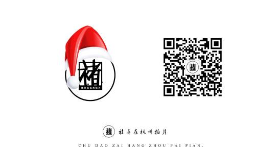 2016年度作品总结《褚导在杭州拍片》