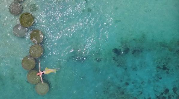 巴厘岛 • 行摄之旅 - Nemo Film