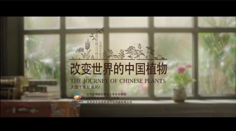 纪录片《改变世界的中国植物》一镜到底先导预告片