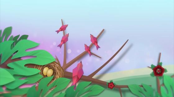 Bird Nest Malaysia