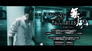 【预告片】NEO Film Studio-《无风 Wind through the Brambles》