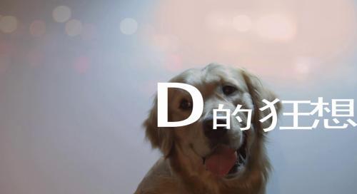 《D的狂想》—毕业作品