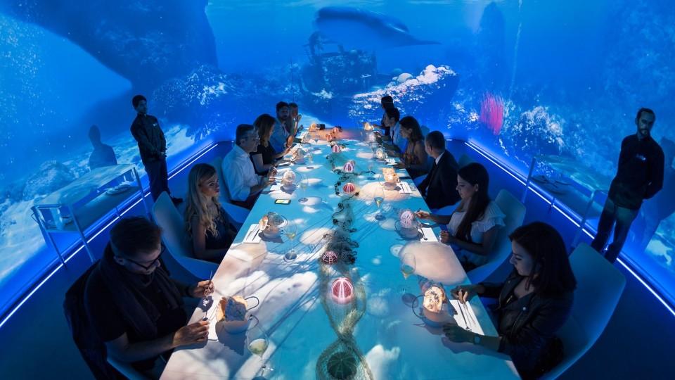 壁纸 海底 海底世界 海洋馆 婚礼 结婚 水族馆 960_540
