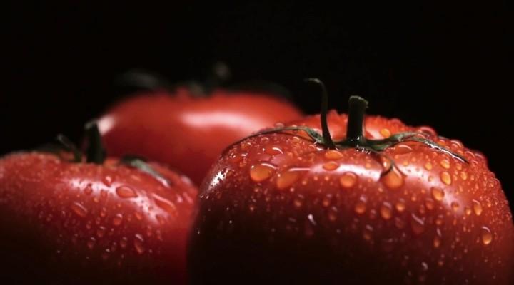 《一顆種子到餐桌的夢想》綠行者×盒馬鮮生 2分鐘廣告完整版