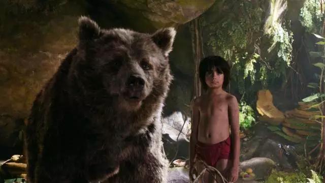 电影《奇幻森林》讲述了毛克利(尼尔塞西 Neel Sethi 饰)是一个由狼群养大的人类男孩,影片围绕他的森林冒险徐徐展开。谢利可汗,一只受过人类伤害的老虎(伊德里斯艾尔巴 Idris Elba 配音),发誓要将毛克利铲除。为了逃脱追捕,毛克利跟随严厉的导师黑豹巴希拉(本金斯利 Ben Kingsley 配音)和自由自在的好友棕熊巴鲁(比尔默瑞 Bill Murray 配音),踏上了一场精彩纷呈的自我探索旅程。在这趟旅途中,毛克利遇到了一些对他居心叵测的丛林生物,包括巨蟒卡奥(斯嘉丽约翰逊 S