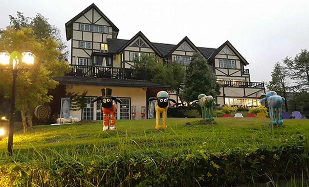 绿光森林,参观台湾绵羊牧场