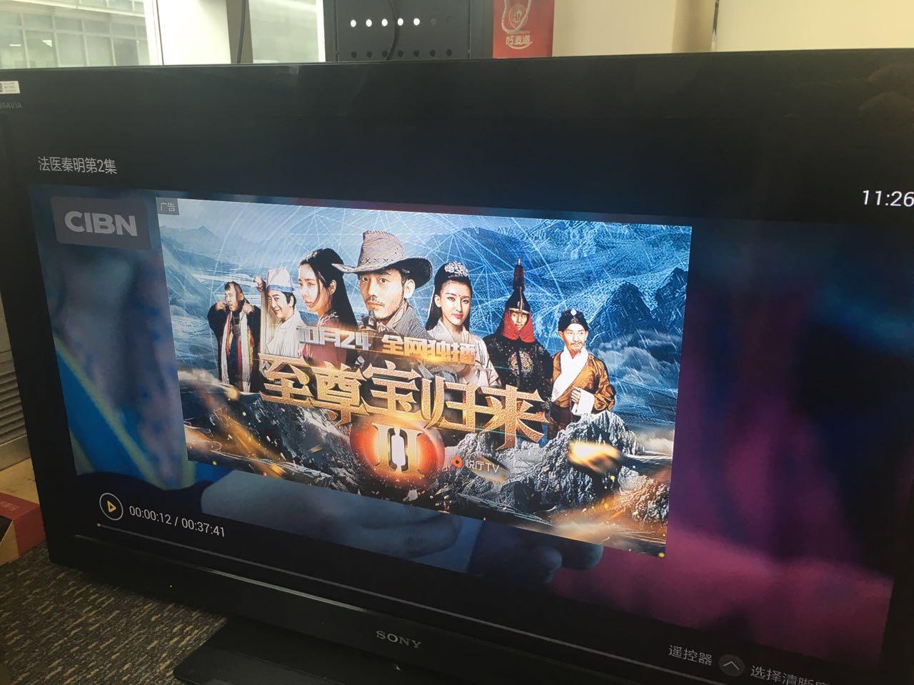 TV端暂停页广告(热剧《法医秦明》)
