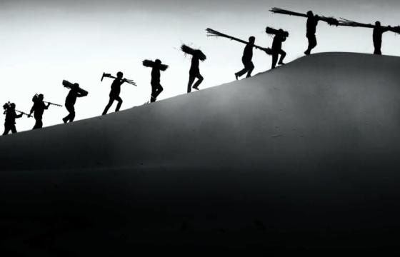 央视公益广告《中国梦-库布其治沙篇》图片