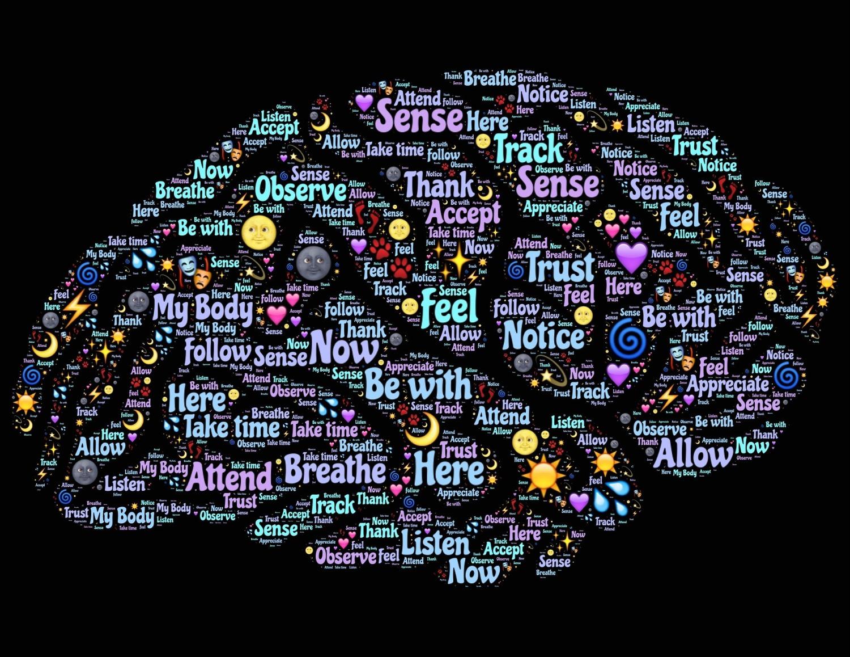 brain-998994_1920.jpg