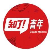知了青年cicada