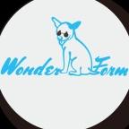 WonderForm