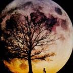 月亮老爸_2